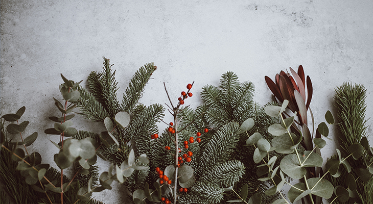 M&S, Christmas Ideas